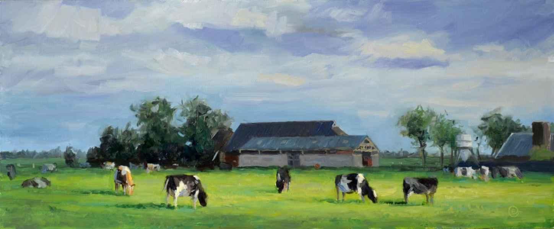 04 koeien