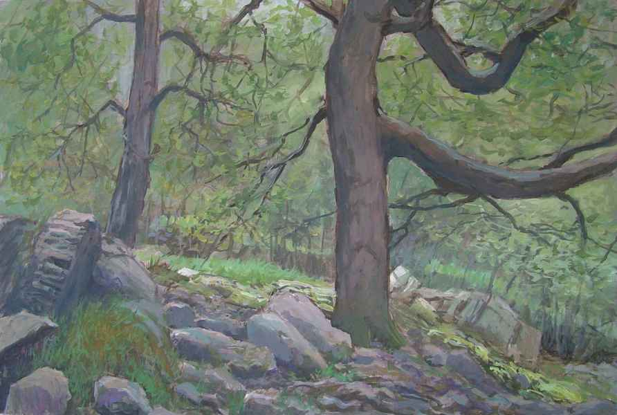 10 bomen naast stroompje